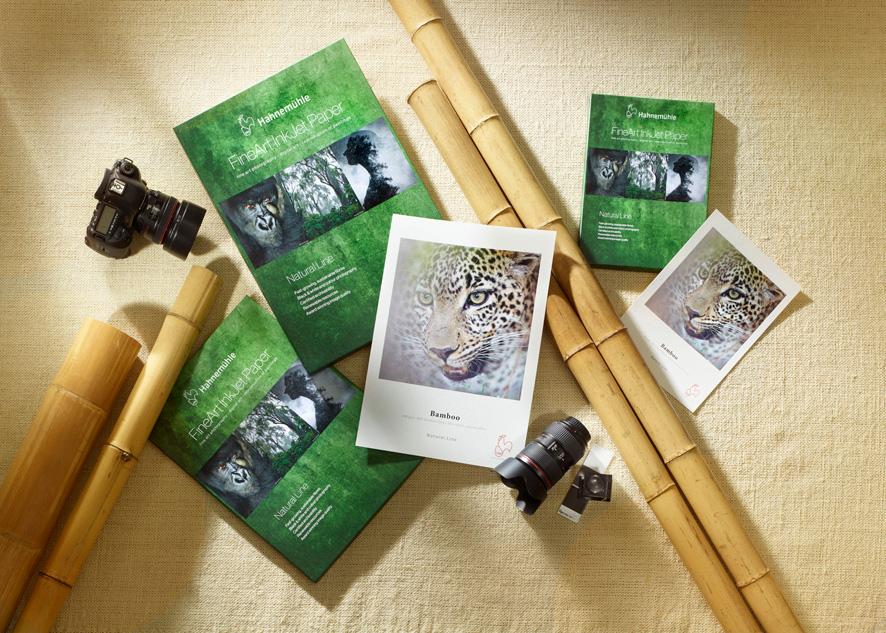 Natural Line: Bamboo